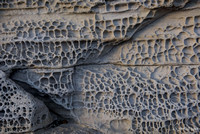 Honeycomb erosion pattern in a coastal sandstone at Ergol, Isle of Skye