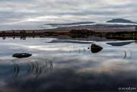 Loch Ba at dawn.